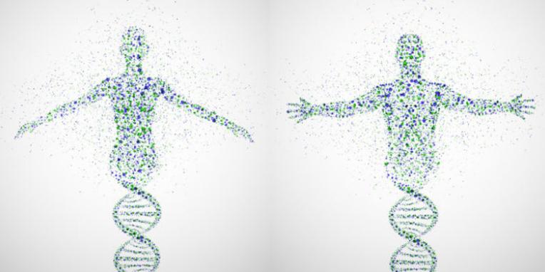 blog DNA