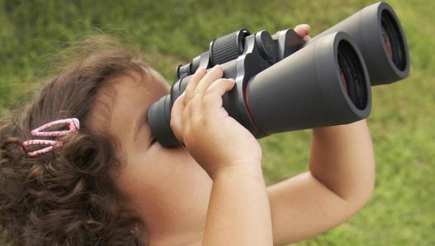 observing-blog