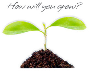 how will you grow.png